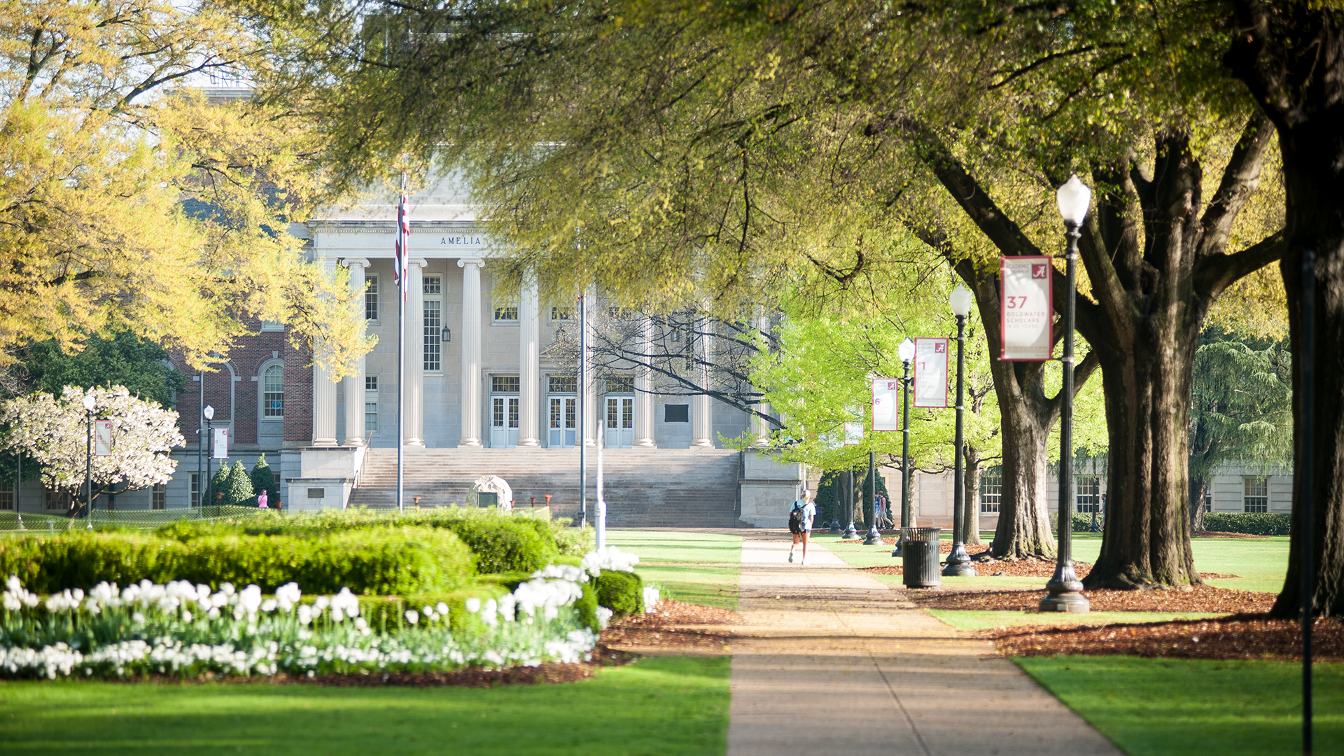 Campus Images University of Alabama
